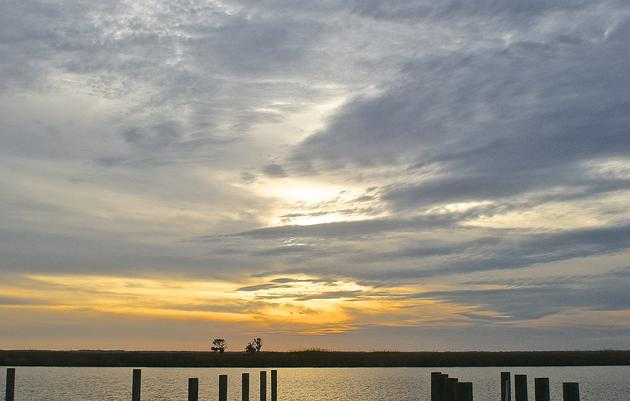 Escape to the Donal C. O'Brien Jr Sanctuary and Audubon Center at Corolla