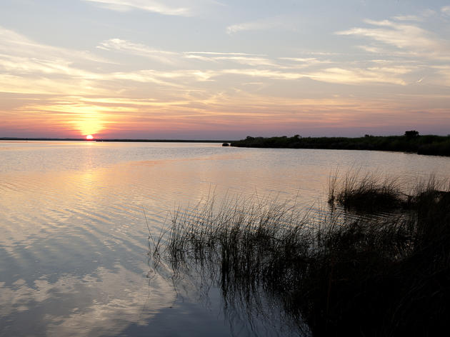 Conserving Currituck Sound for Future Generations