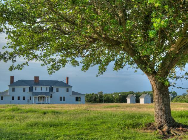 History of Pine Island