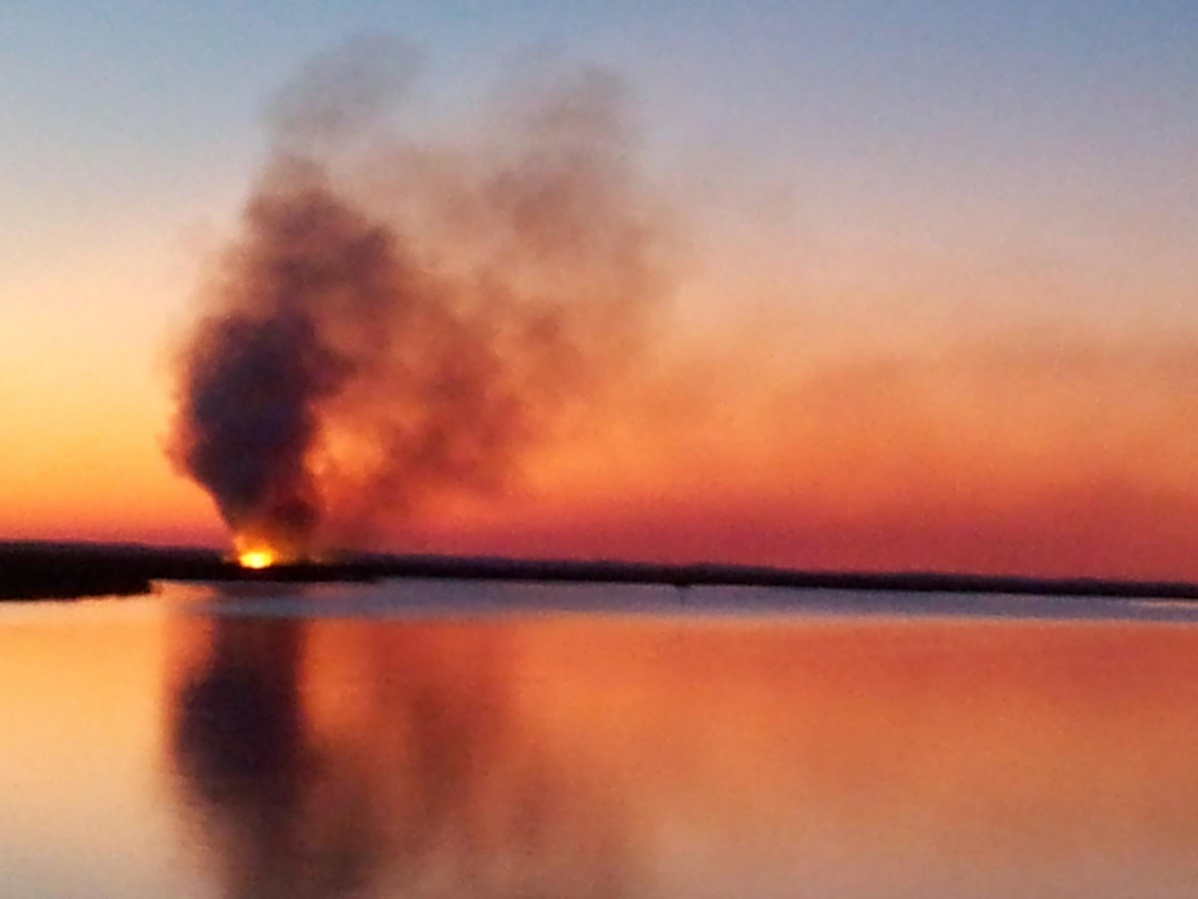 marsh under controlled burn